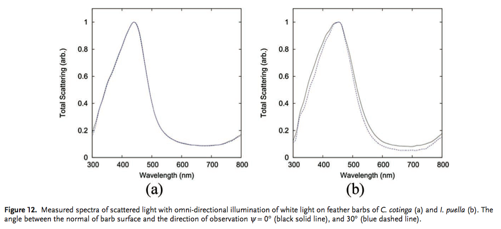 How non-iridescent colors are generated by quasi-ordered