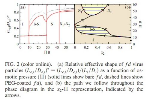 Phase diagram and effective shape of semiexible colloidal rods and finally the authors studied worm like micelles figure 3 in the i n phase transition for different micelle models in all the incorporation of ccuart Choice Image